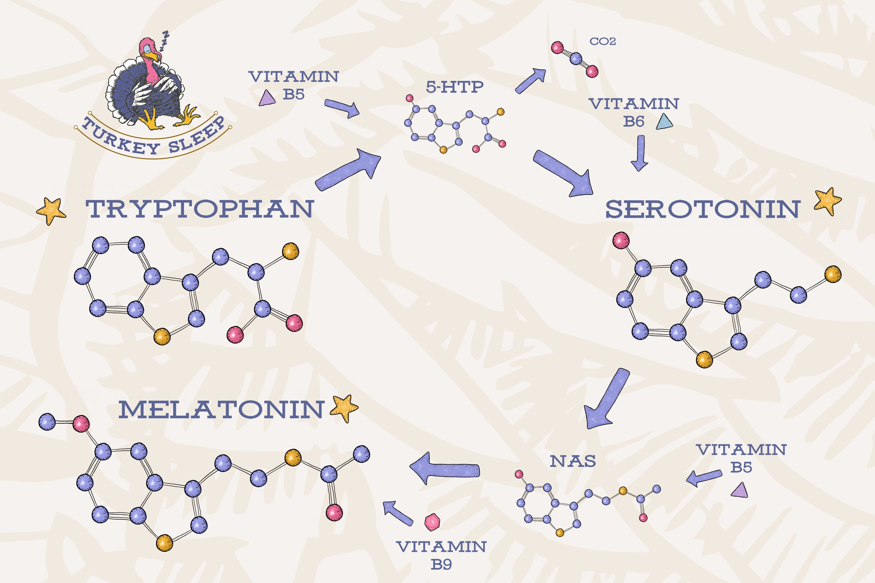 Which sleep supplement is better, Tryptophan or Melatonin? - Quora
