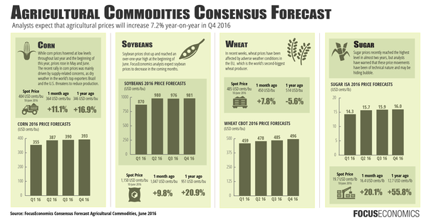 weather commodities trader