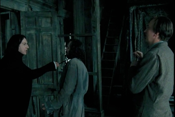 In your opinion what was Sirius Black's intent when he told Severus