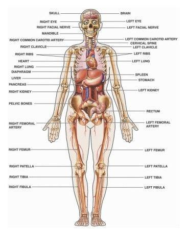 I want to become an EMT and eventually a Paramedic. What are some ...