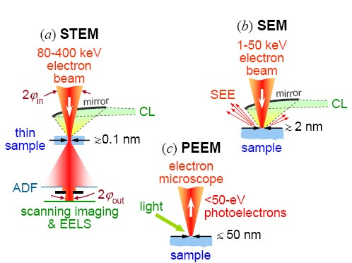 What are the structural differences between a sem and a tem quora and for the finale the electron beam sample interactions differences between the two ccuart Images