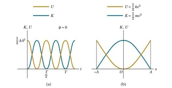 What Is The Displacement Of An Object In Simple Harmonic Motion If