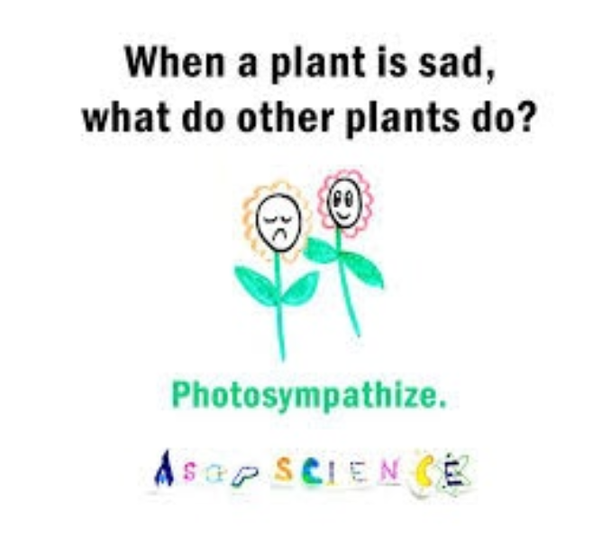 Which are the best science jokes? - Quora