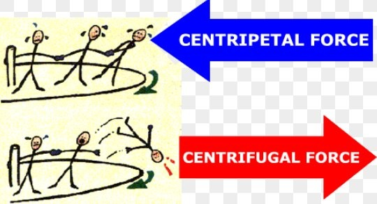 Centripetal & centrifugal forces what forces act to hold a state.