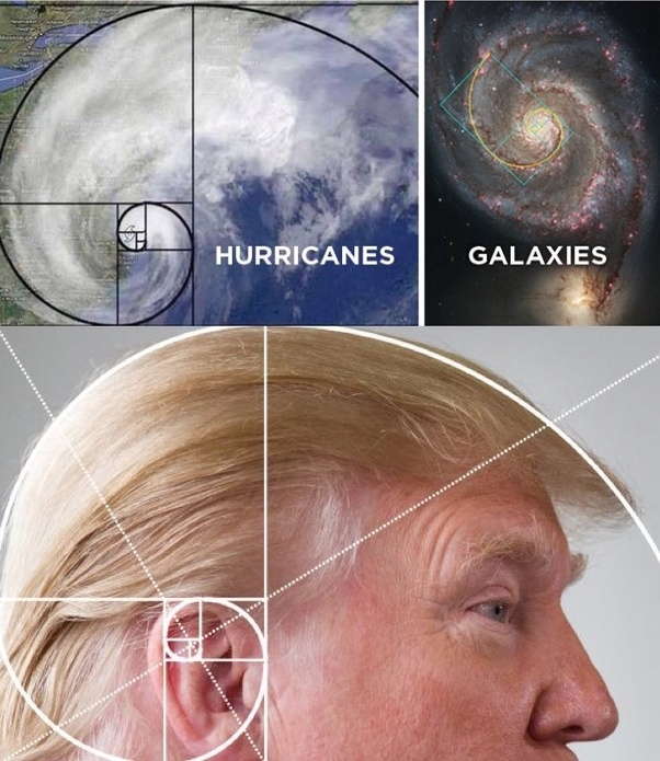 Donald Trump hair Fibonacci Golden Rate