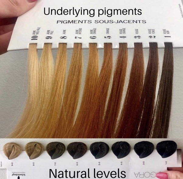 Wella hair coloring pages | 591x602