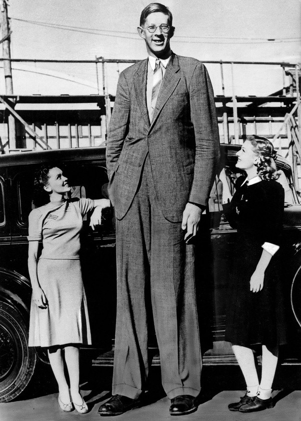the tallest human ever