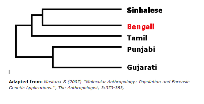 Is Bengali a race or ethnicity? - Quora