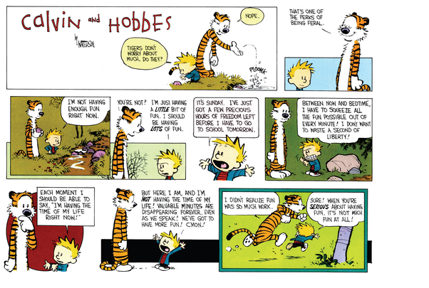 What Are Some Of The Best Calvin And Hobbes Cartoons?