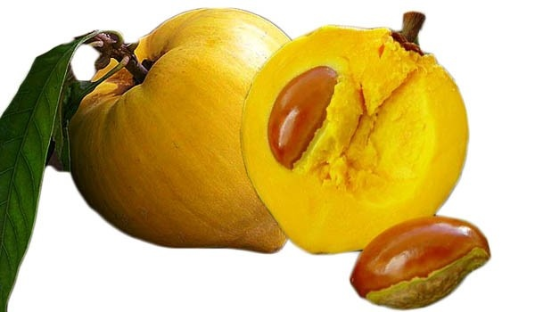 What are fruits that start with the letter C? - Quora