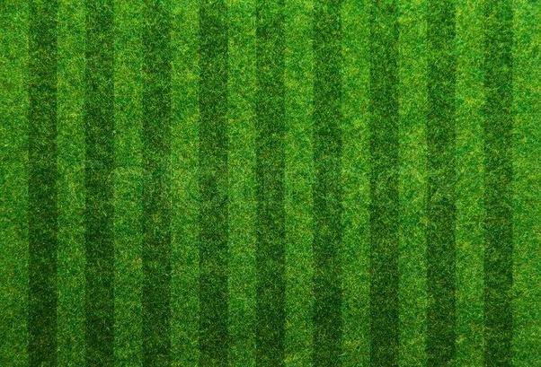 soccer field grass pattern