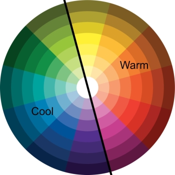 Look At The Color Wheel Usually Either Complementary Colors Opposite Or Adjacent Go Best