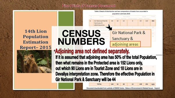 How to view the Gujarat's policy of not giving Asiatic lions