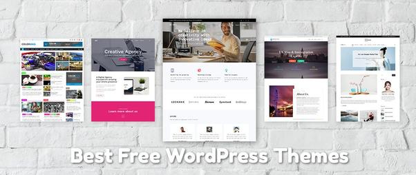 wordpress template optical site