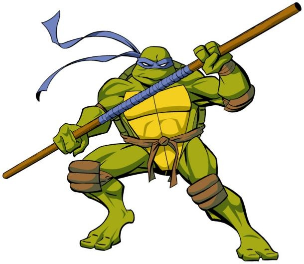 What Is The Name Of The Blue Ninja Turtle And What Was The Process