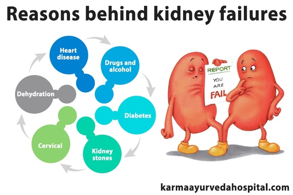 What Are The Causes Of Kidney Failures Quora
