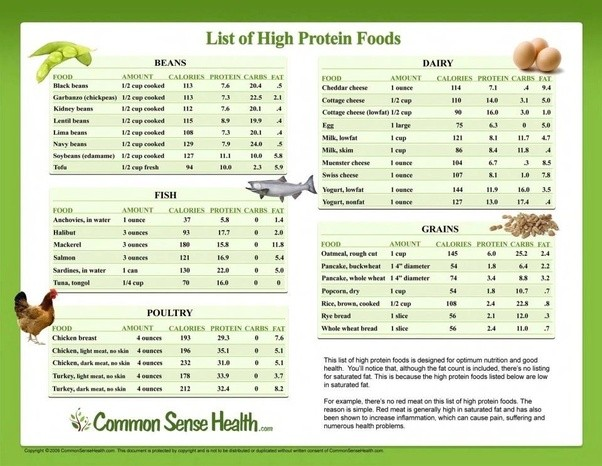 Food Nutrition Protein