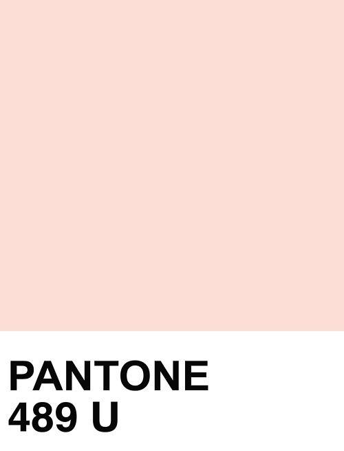 Cuál Es El Color Rosa Palo Quora