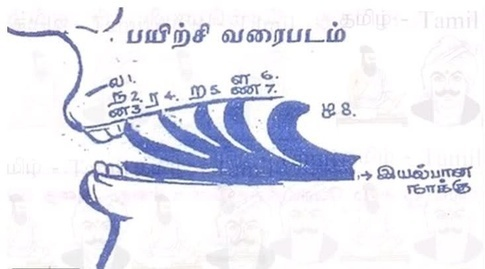 How should the 'zh' found in Tamil and Malayalam words be