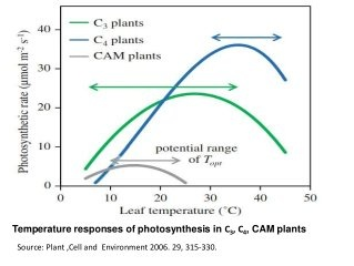 C3 AND C4 PHOTOSYNTHESIS EBOOK DOWNLOAD