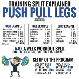 Tag Best Push Pull Legs Routine — waldon protese-de-silicone