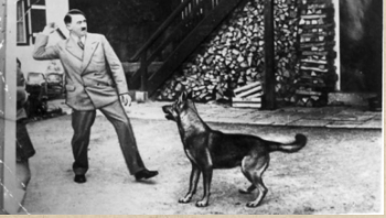 Hat Hitler gezögert, bevor er sich umgebracht hat?