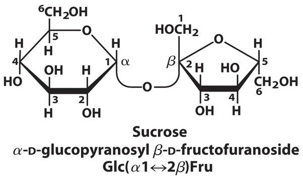 What is the chemical formula of sugar quora common sugar or table sugar used in households is sucrose which is a disaccaride of glucose and fructose urtaz Images