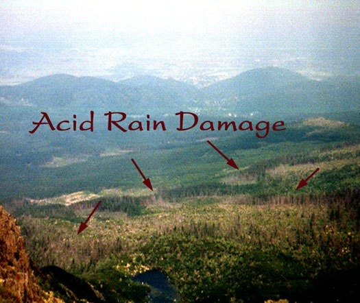 what effect does acid rain have on the environment quora