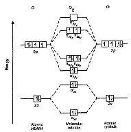 why does o2 paramagnetic? - quora paramagnetic molecular orbital diagram