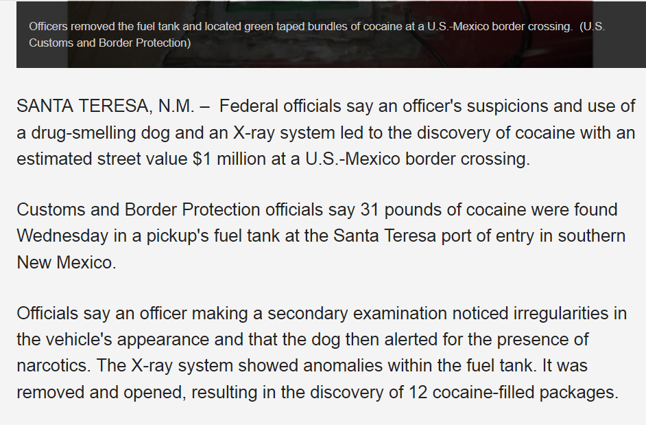 Can sniffer dogs smell LSD? - Quora