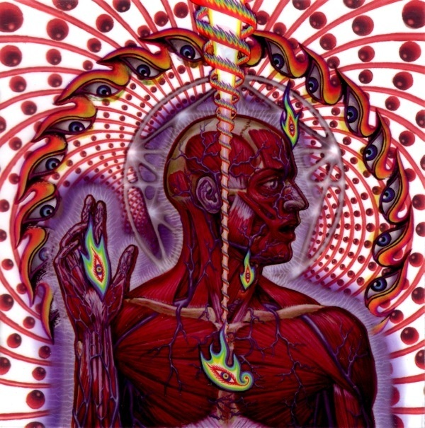Has anyone, aside from Terence McKenna, encountered 'self