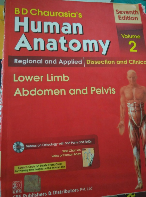Do I Really Need An Anatomy Manual In The First Year If Yes What