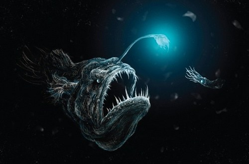 What kind of lifeforms are there in the depths of an ocean is there thats the pacific angler fish it uses that bright bulb as a bait to attract prey you see in the part of the deep sea known as the twilight zone publicscrutiny Images