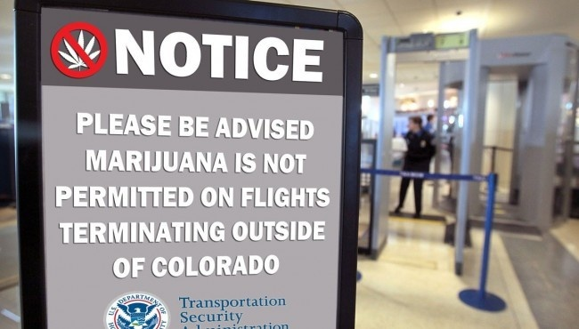 How easy is it for weed to be detected in an airport? - Quora