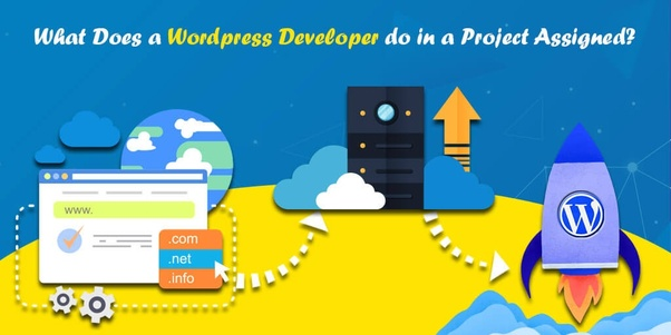 Who is actually a WordPress developer and what does he do? - Quora