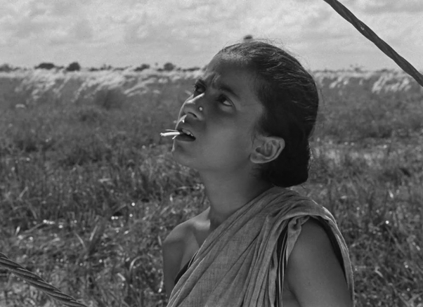 why is the movie pather panchali so iconic quora