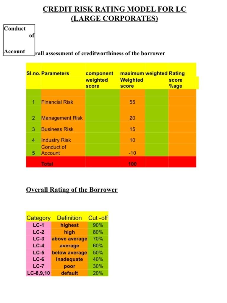 Scoring model of the borrowers credit rating
