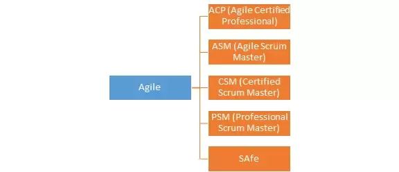 which scrum master certification has more value and is more ...