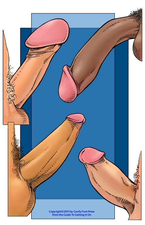 Dick curved 20 Types