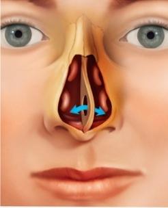 コカイン 鼻 の 穴