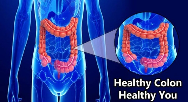 How does a colon cleanse work? - Quora