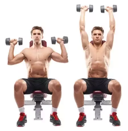 What are the best exercises for shoulders quora seated dumbbell shoulder press you want to start your workout with a compound movement the primary focus is on the deltoid with the triceps and upper pec publicscrutiny Gallery