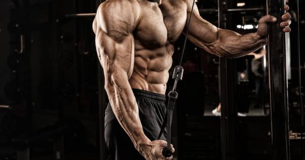 How to exercise to get wide shoulders - Quora