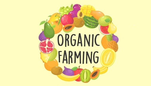 organic produce essay There are so many advantages of organic food, some obvious and some not-to-so-obvious some organic food benefits are solely about you, some about others, and some about the environment important disclaimer: none of the health topics presented on sustainable baby steps have been evaluated or.