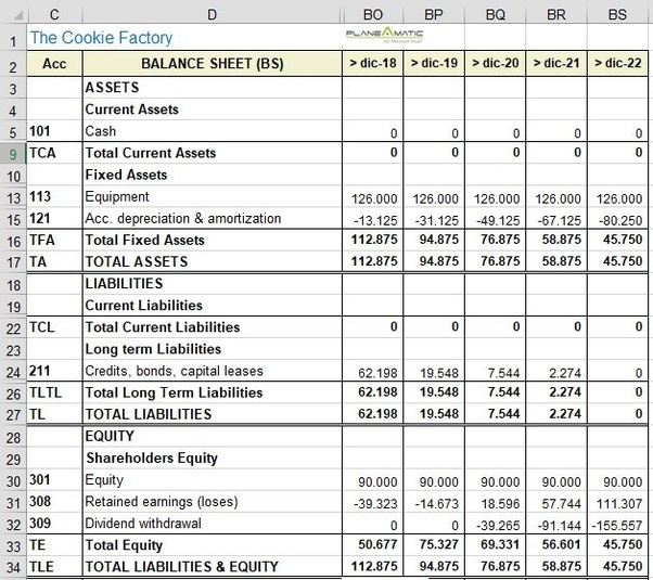 what is the format of financial statements including balance sheet