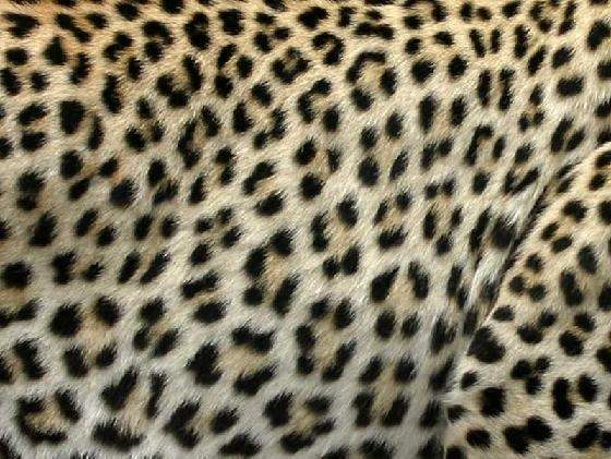 Whats the difference between cheetah and leopard print quora here is the rosette pattern on a leopard thecheapjerseys Choice Image