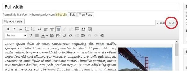Can I add my own code to a wordpress theme in the middle of a ...