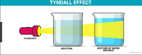 What Is The Tyndall Effect Of A Solution