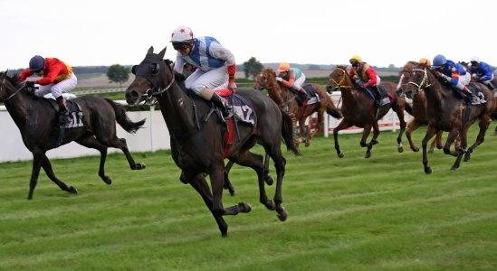 Horse racing betting pundits pieces mainbrucke bettingen burton