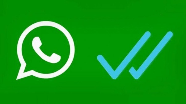 How To Send Message Someone Who Has Blocked You On WhatsApp (4 Methods)